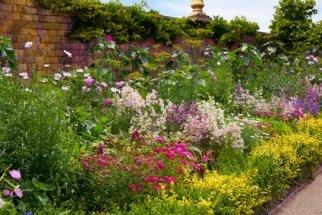 Beautiful Perennial Garden.