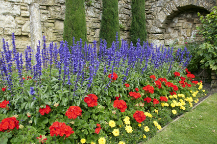 A Perennial Garden With Only Three Colours.