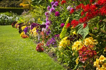Very Bright Perennial Garden.