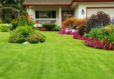 Beautifully Landscaped Front Garden Of Perennials.