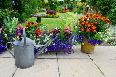 Carefully Chosen Bright Colours Make This Garden.