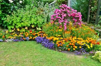 Beautiful Perennial Garden.