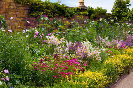 Traditional English Herbaceous Border.