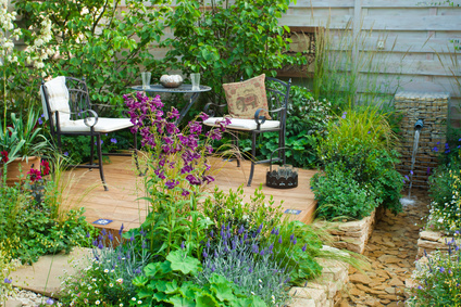 Country Garden Setting Amongst The Perennials.