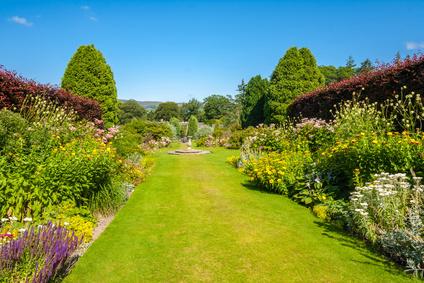 Well Designed Perennial Garden.